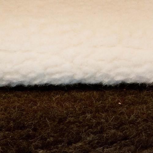 Wooly PE