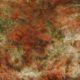 Meubelstof Ice Velvet 19087 Oceanie - 3006-rust